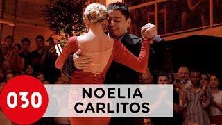 carlos noelia tango show